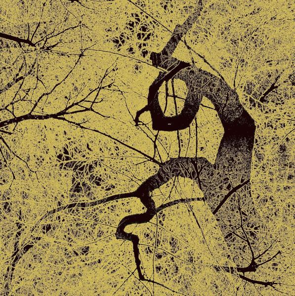 Serge KOCH - BOUGH 4 - CADAQUES 20141800